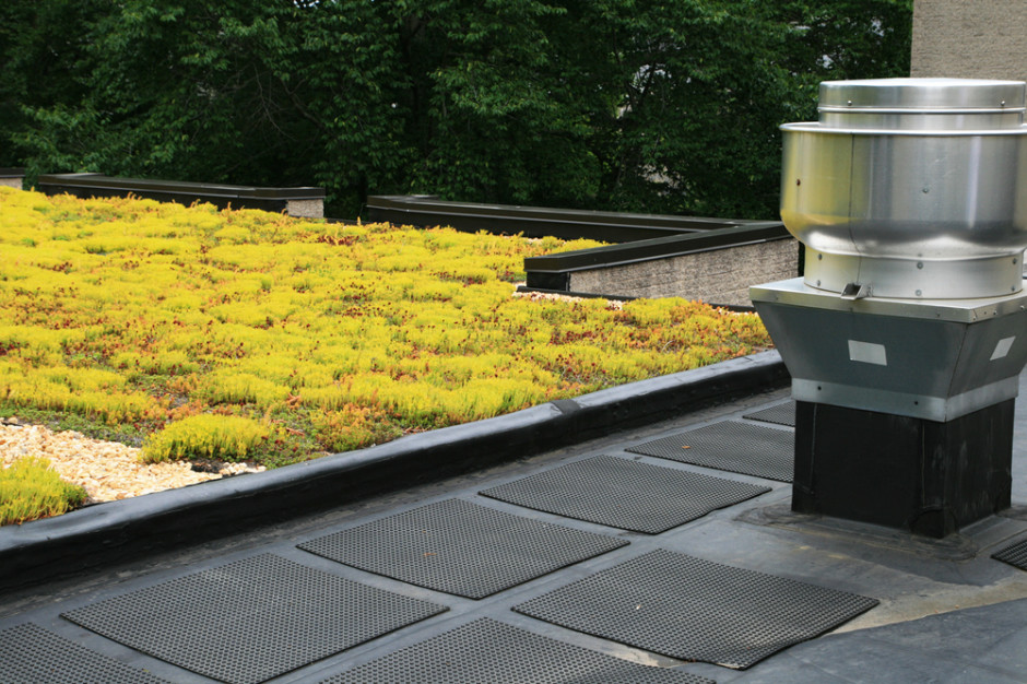 flat roof installation, maintenance and coating